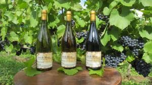 Côtes de Meuse Rouge, Gris & Blanc