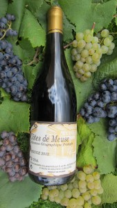 Côtes de Meuse Rouge