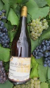 Côtes de Meuse Gris